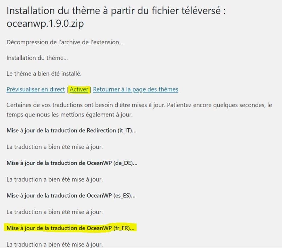 Installer Un Theme WordPress En Français
