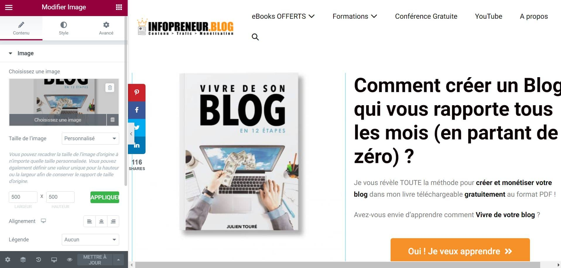 Interface Elementor Theme WordPress En Français